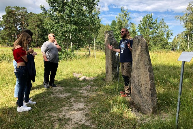 Private Tour: Viking History Trip from Stockholm Including The Runic Kingdom, Estocolmo, Suécia