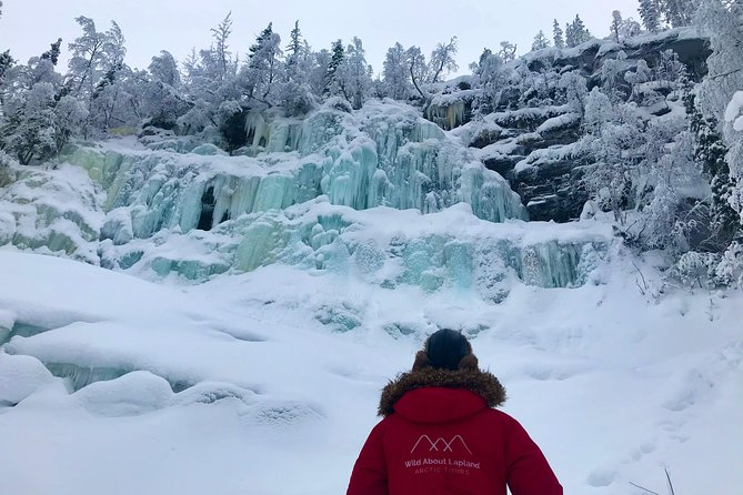 Explore the breathtaking Korouoma Canyon and its majestic frozen waterfalls with this all-day guided excursion.