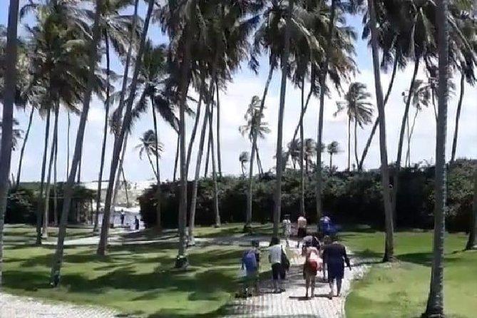 parrachos de rio do fogo, Natal, BRASIL