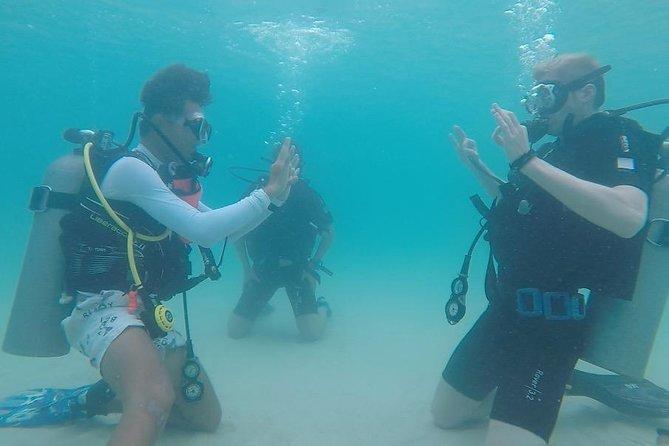 Basic Diver, Ko Tao, Tailândia