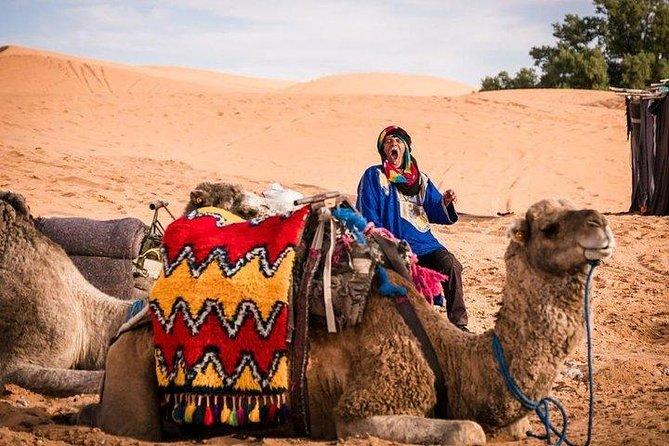 4 días al desierto del Sahara desde Fez a Marrakech, Fez, MARROCOS