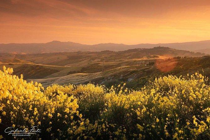Brunello wine tour and Val D'Orcia Landscape, Arezzo, ITALY