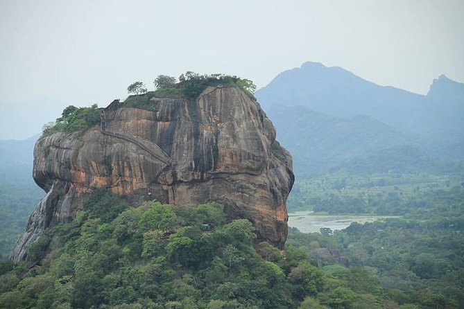 Don't miss anything during your visit to Sri Lanka. Experience everything Sri Lanka has to offer. This tour include all the major tourism cities in the country, including Negombo, Sigiriya, Polonnaruwa, Kandy, Nuwara Eliya, Ella, Yala and Galle.