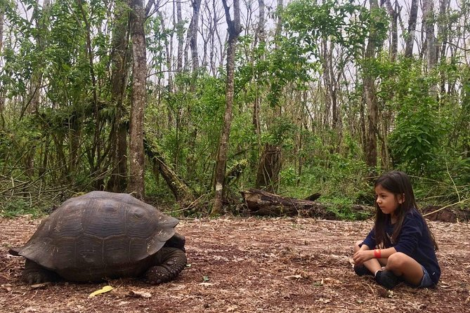 The Giant Tortoise Experience | Lava Tubes + Los Gemelos (Shared Tour), Guayaquil, ECUADOR
