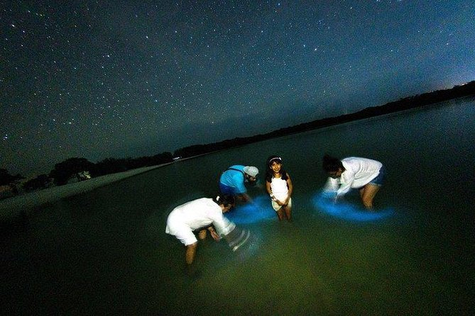 Tour de Bioluminiscencia en Punta Cocos, Isla Holbox, MEXICO