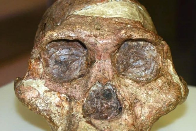 Maropeng, Cradle of Mankind including Sterkfontein Caves, ,