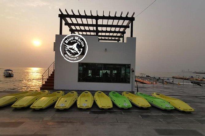 MÁS FOTOS, Blue Marlin Veracruz
