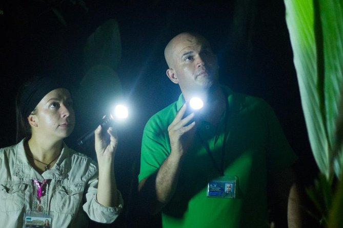 Do you want to discover what happens at night in one of the most interesting and important ecosystems in Costa Rica? The nocturnal humid tropical forest awaits you!<br><br>A guide with experience in night walks, will take you to live two hours of mystery and suspense with what we can find on this night tour.