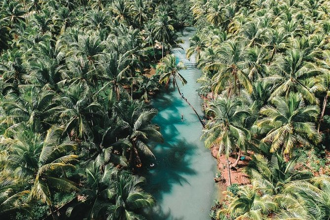 Siargao is a place for everyone. Known as the surfing capital of the Philippines, this humble island in Surigao del Norte has lots of breathtaking natural attractions worth bragging about. Spend the day island hopping between Magpupungko, Tayangban Cave, Pacifico Beach and Maasin River in Siargao.
