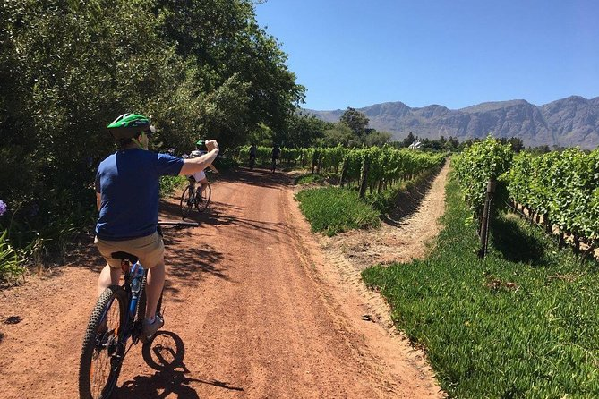 This is leisurely cycling at its best. Water stops happen to be wine tasting that take place on some of the most beautiful farms in the country. Our carefully constructed routes among the vines allow for some flexibility. It's your day – we can shorten or lengthen the distance no problem. Let's get to the first farm for wine tasting and build your memorable cycle experience from there.