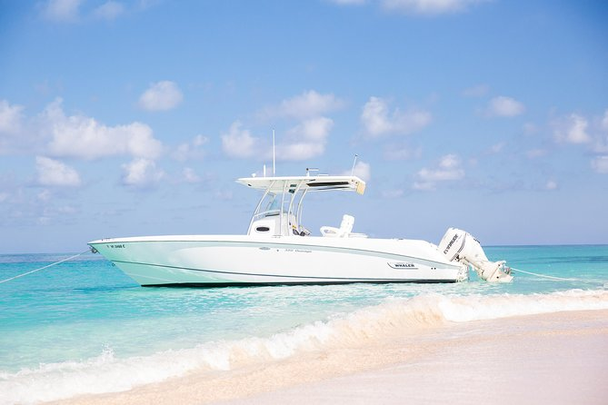 Buck Island Private Charter from St Croix, ,