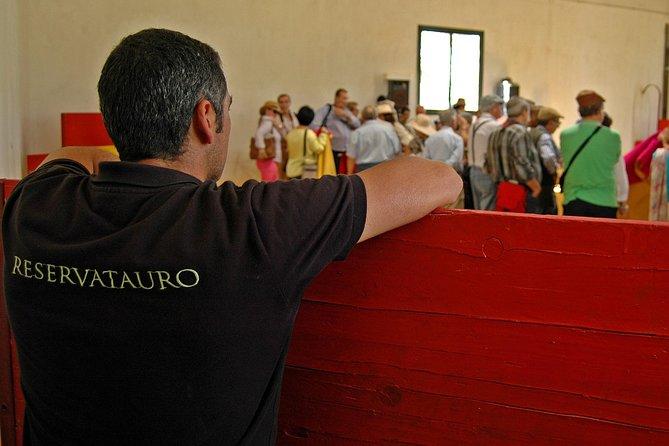 Andalucia Bull and Horse Farm and Ronda Private Tour from Malaga, Malaga, ESPAÑA