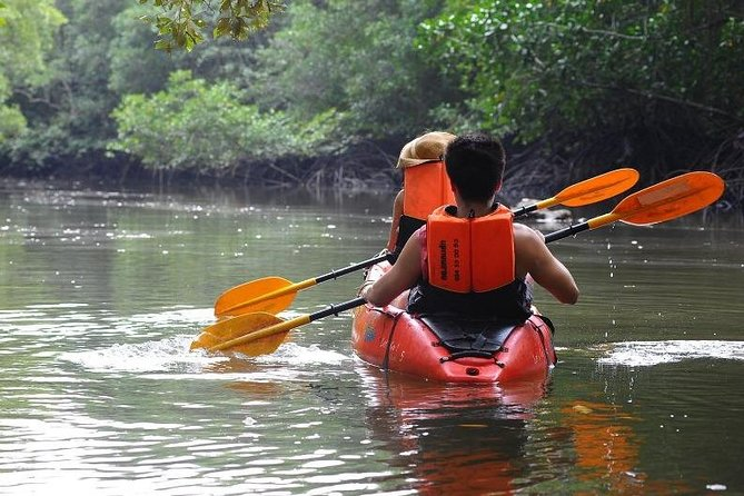 Deep mangrove and canyon Kayak Tour in Krabi, Krabi, TAILANDIA
