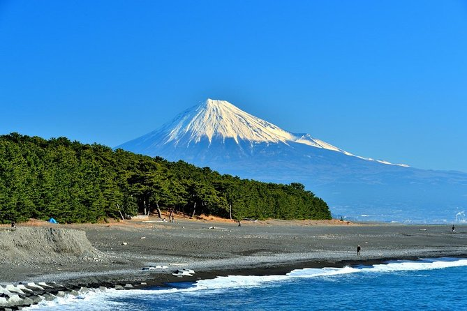 This value-packed trip with a nationally-licensed and experienced multilingual tour guide is a fantastic and efficient way to explore Central Shizuoka/Shimizu!<br><br>Shizuoka is home to amazingly unique food, history, culture and natural beauty. Follow in the footsteps of ancient travelers along the Old Tokaido Road while taking in the majestic views of Mt. Fuji and other natural attractions. Come to Shizuoka and see the unforgettable sightseeing spots for yourself!<br><br>Let us know what you would like to experience and we will customize a six-hour tour that's best for you.<br><br>Note*1: Please select your must-see spots from a list in the tour information to create your customized itinerary.<br>Note*2: Nationally and State Licensed Tour Guide-Interpreter certification is issued by the Japanese government requires a good knowledge and understanding of Japanese culture and history.