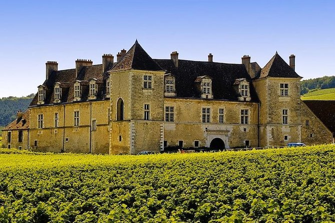 While visiting the vineyards of la Côte de Nuits, you will get explanations on the terroir of Burgundy and the wine production (soil, climate, sun exposition, grape varieties etc...). You will also learn the classification of Burgundy wines : 1er Cru, Grand Crus, etc.<br><br>Discover family domains of wine production. Typical winemaker houses with winerie and historicals cellars. Wine tasting