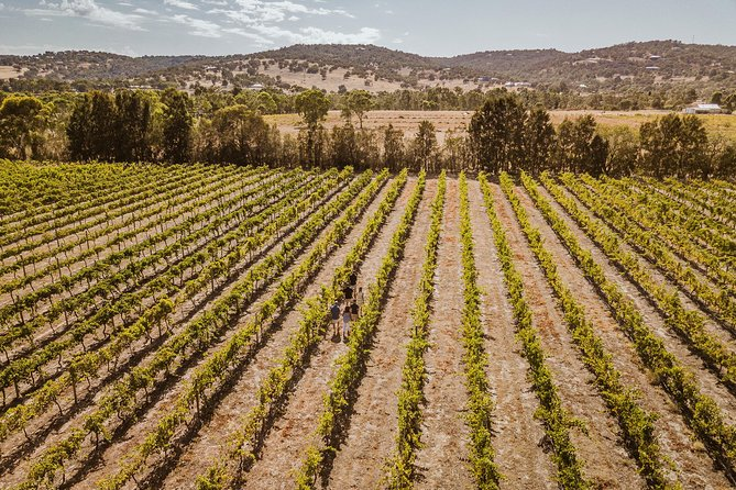 Swan Valley Premium Winelovers Experience - Small Group Wine Tour, Perth, AUSTRALIA