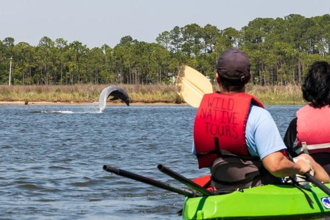 MAIS FOTOS, Dolphins and Wildlife Kayak Experience from Gulf Shores