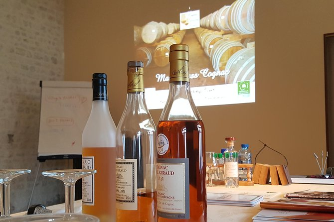Cognac Masterclass with a certified Educator, Cognac, França