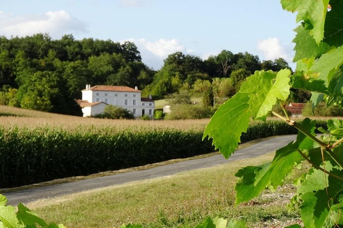 Private day-tour from Cognac : Vineyard and Craft Distilleries with Tastings, Cognac, França