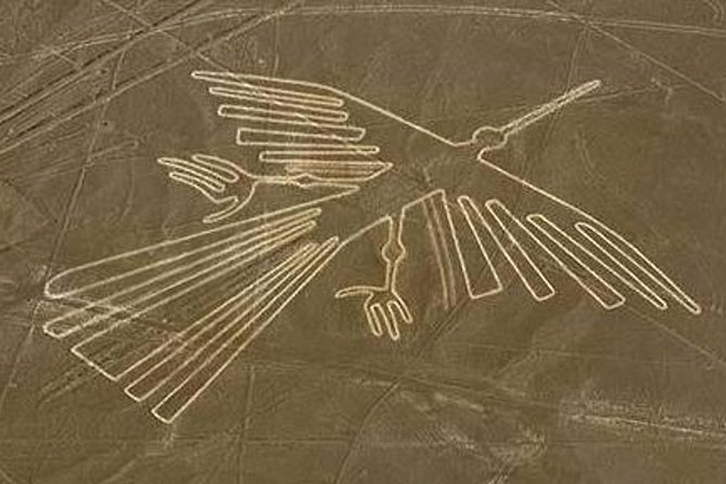 Enjoy a wonderful overflight over Nazca Lines, to see different enigmatic images in the land. <br>Most lines run straight across the landscape, but there are also figurative designs of animals and plants, made up of lines. The individual figurative geoglyph designs measure between 0.4 and 1.1 km (.2 and .7 mi) across.<br>The figures vary in complexity. Hundreds are simple lines and geometric shapes; more than 70 are zoomorphic designs of animals such as a hummingbird, spider, fish, llama, jaguar, monkey, lizard, dog and a human. Other shapes include trees and flowers. Scholars differ in interpreting the purpose of the designs, but in general, they ascribe religious significance to them