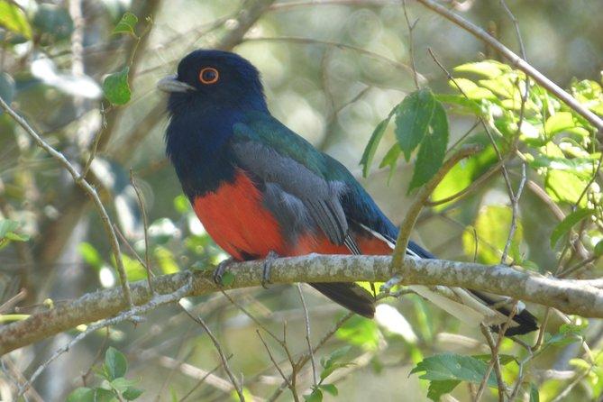 MORE PHOTOS, San Rafael National Park short break