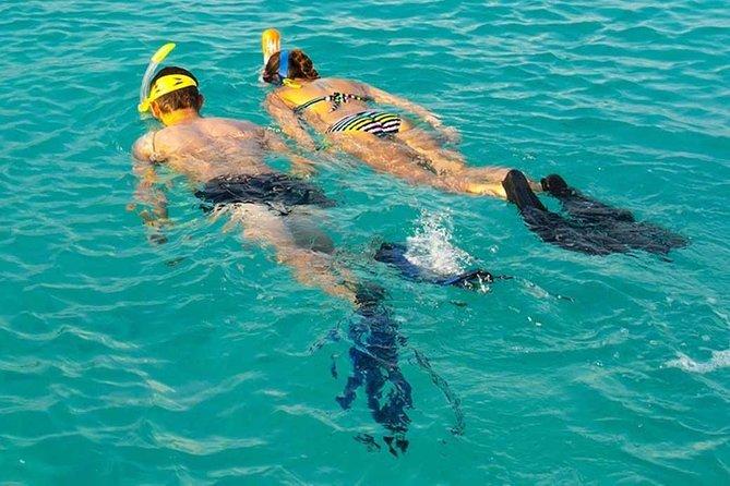 MÁS FOTOS, Snorkeling at Mnemba Atoll