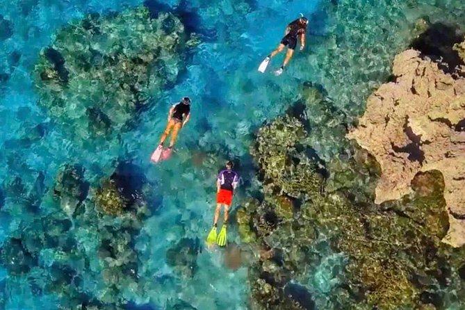 Snorkeling Trip, Ko Tao, Tailândia