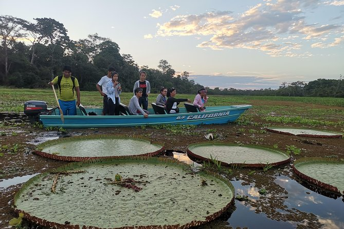 Private Amazing Amazon Discovery Tour - 4 Days, Iquitos, Peru, Iquitos, PERU