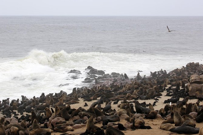 Mesmerizing Messum Crater 10 hour private tour, Walvis Bay, NAMIBIA
