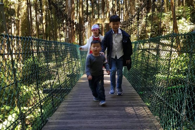 Full-Day Tour to Alishan National Park from Kaohsiun, Kaohsiung, TAIWAN