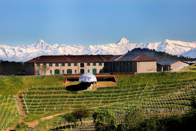 Rarity wine tour and tasting at Ceretto Winery, Langhe-Roero y Monferrato, Itália