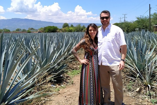 Tequila Route Tour with a Local Expert, Guadalajara, MÉXICO