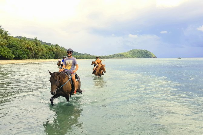 Afternoon Beach Horse Ride in Cape Tribulation, Cape Tribulation, AUSTRALIA