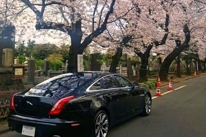 Excursión en coche privada por Tokio con un conductor que habla inglés, Tokyo, JAPON