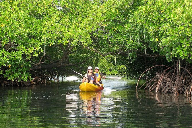 Explore the other side of Havelock Island with this tour program. Kayaking through the mangroves and listening to the chirping of the birds is once in a lifetime experience.