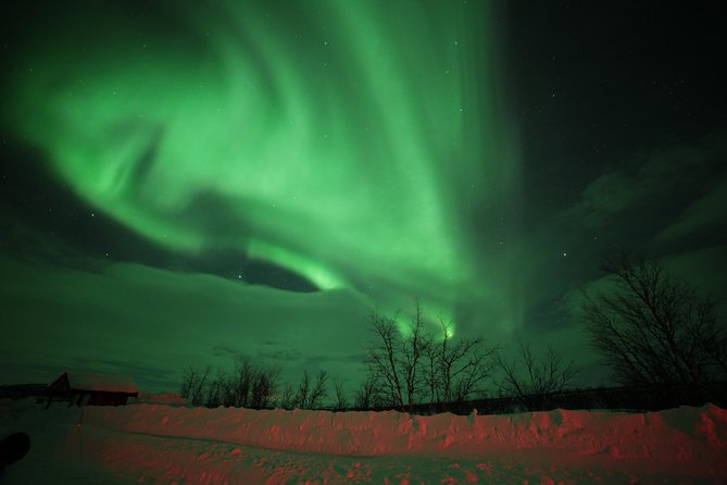 """Join us for an unique Northern Lights Tour in Alta, in Northern Norway and experience the breathtaking magic of the sky.<br>Alta is an excellent location to see the Northern lights, due to the stable in-land climate during the winter.<br><br>Why should you book a tour with us?<br><br>We are the only tour operator in Alta, that offers a """"Northern Lights guarantee"""". Read more about it in our tour descriptions.<br>We only offer our Northern Lights guarantee for booking at our site.<br><br>The founder of the company has a Sami background, so it is natural for us to give our guests insight into the Sami history and culture. We can offer tours in english, norwegian and german language.<br><br>We focus on tours with small groups and high service in a personal and cosy atmosphere. Our bus is modern and provides good space and comfort for our passengers. Upon request we can also offer 50-seat bus service."""