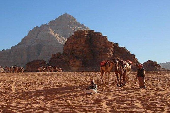 Petra and Wadi Rum Day Trip, ,