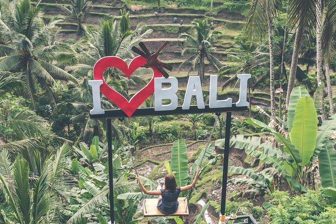 Best of Ubud - Jungle Swing - Monkey Forest - Waterfall - Water Temple & Wi-Fi, ,