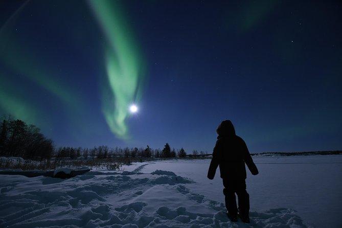 The greatest aurora tour in yellowknife, Yellowknife, CANADA