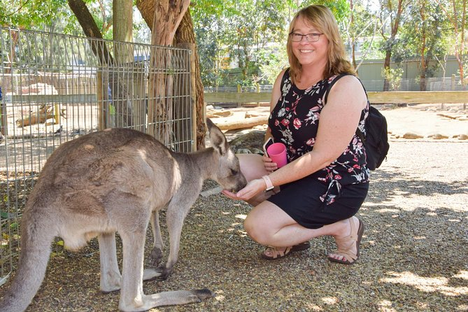All Inclusive Full-Day Blue Mountains Trip from Sydney, Sidney, Austrália