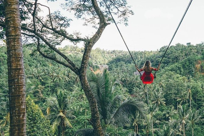 Bali Instagram SightsTour, ,