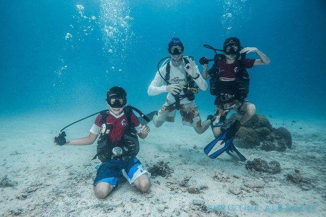 Try Diving Koh Tao, Ko Tao, TAILANDIA