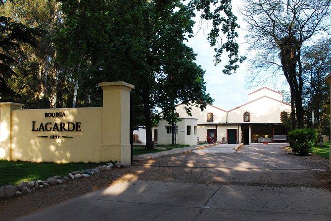 Tour Privado Vinicolas Lujan de Cuyo / Maipu, Mendoza, ARGENTINA