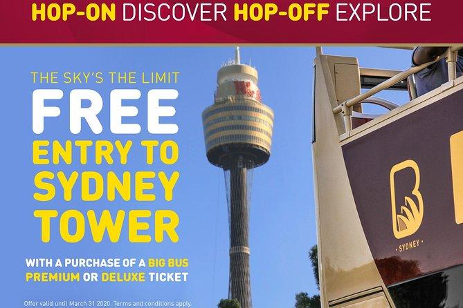 Excursion en autobus con paradas libres por Sydney y Bondi. Hop On Hop Off, Sidney, AUSTRALIA