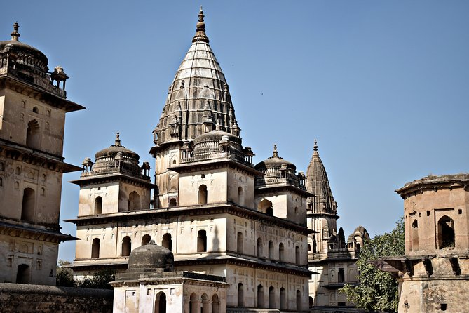 """An exciting tour to the enigmatic cenotaphs of """"Orchha"""" . More enigma is about the white vultures encircling the towering cenotaphs which are not found in any other part of India. Killing vultures are profane since they are considered to be the guardian angels of the cenotaphs dedicated to erstwhile royals ruling over this region. Also enjoy the banks of river betwa flowing adjacent to the cenotaphs.<br>Khajuraho is popular for its temples and world heritage sites. Visit these popular ancient Temples. Tour lets you explore the world heritage sites which has amazing sculptures and architecture that will mesmerize you and will give a wonderful feeling."""