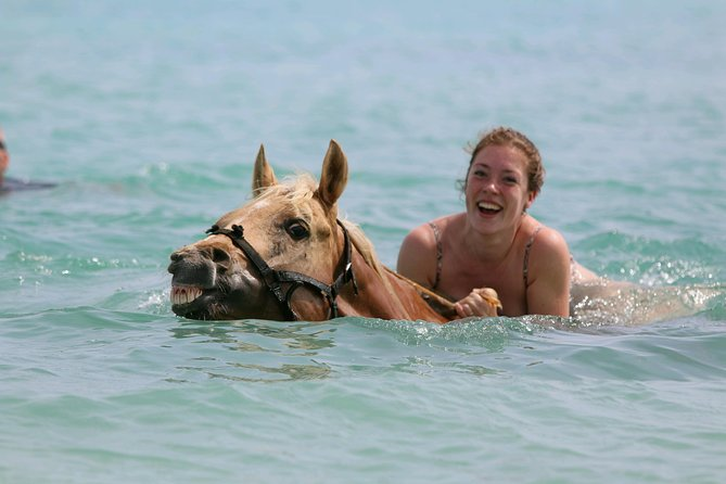 A spectacular trailride through the varying landscape of Bonaire´s countryside, Mangroves and an once in a lifetime experience, …swimming with horses in the turquoise caribbean sea. @Horse Ranch Bonaire, with the most happiest horses and friendliest tour-guides of the Island, they make this dream come true!