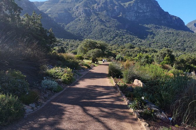 Cape of Good Hope Cape Point Penguins Kirstenbosch Day Tour from Franschhoek, ,