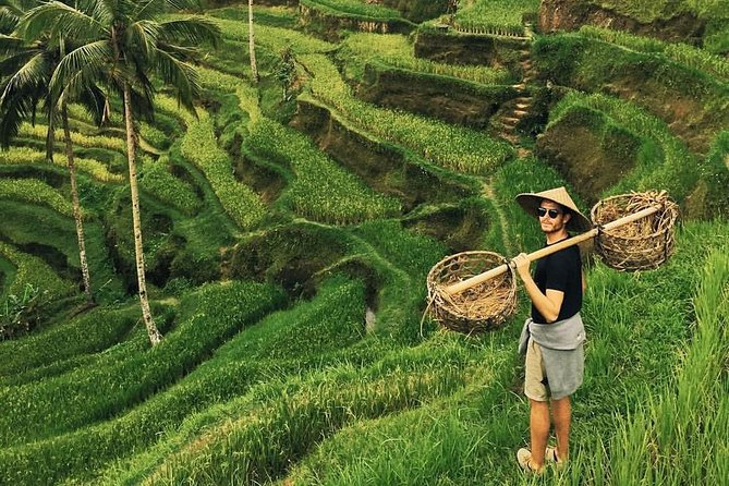Visit the artisan villages around Ubud on a full-day tour of Balinese culture. Check out the local handicrafts, including batik in Batubulan, gold and silver jewelry in Celuk, and wood sculptures in Mas. Visit Batuan Temple and Sebatu Holy Spring Temple, then enjoy a buffet lunch overlooking Kintamani Volcano (Mt. Batur). In the afternoon, you're guided to a Luwak coffee plantation, rice field, the Ubud Village, Ubud Art Market, and Tegunungan Waterfall. <br> - Enjoy a buffet lunch with views of Mt. Batur <br> - Learn from your guide about luwak coffee and Balinese rice terraces <br> - Visit Ubud Monkey Forest, Ubud Art Market, and Ubud Palace <br> - Round-trip hotel transportation by air-conditioned minivan<br>