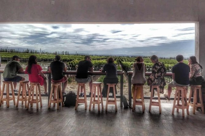 Luxury, small group (eight people) wine tour of Mendoza´s fine wine region.  We spend the day visiting the very best wineries (three to four in one day) and trying the best wines in the most beautiful locations. A multiple course gourmet lunch with wine pairings is included. A guide accompanies you throughout the day and gives insights and anecdotes regarding wine and Mendoza. Many of our guides are trained sommeliers or winemakers. The tour is in one language and the wineries and region (Lujan de Cuyo or Uco Valley) differ from day-to-day as there are many amazing places to see. Our tours are fun and casual with the focus on exceptional wines, creative food and stunning settings.