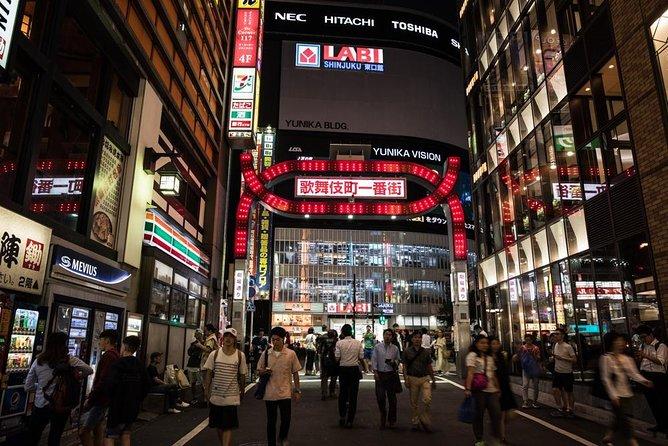 Excursion nocturna en Tokio, Tokyo, JAPON